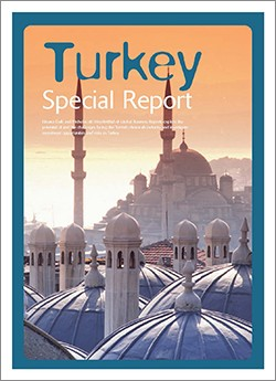 Global Business Reports - Turkey Chemicals 2006 Speciality